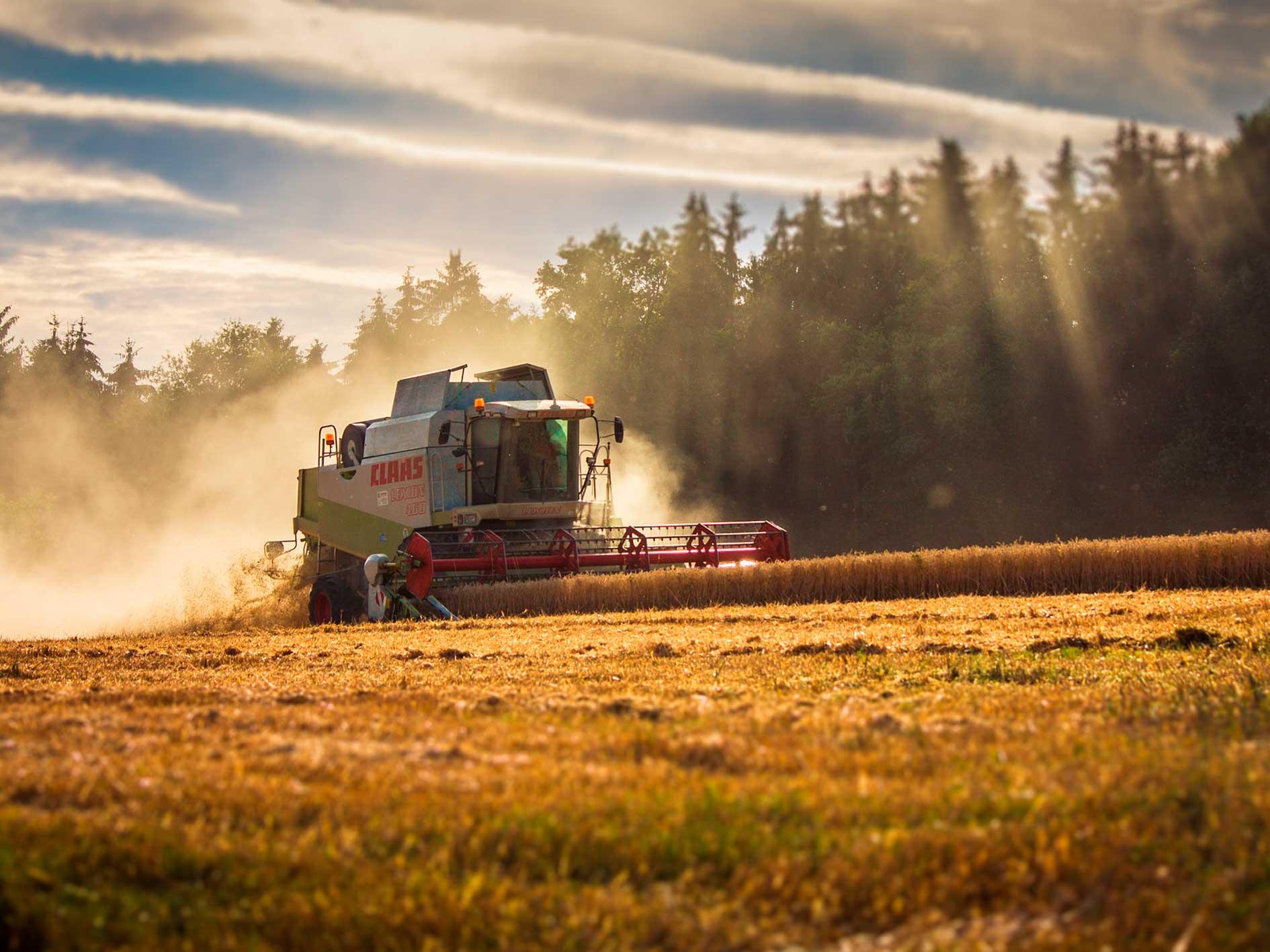 Termografering i landbruget